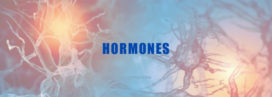 hormones -Lyfe Medical Wellness
