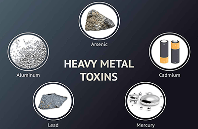heavy toxins