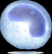NK cells - corona virus treatment