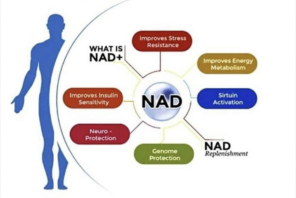 NAD+ Therapy